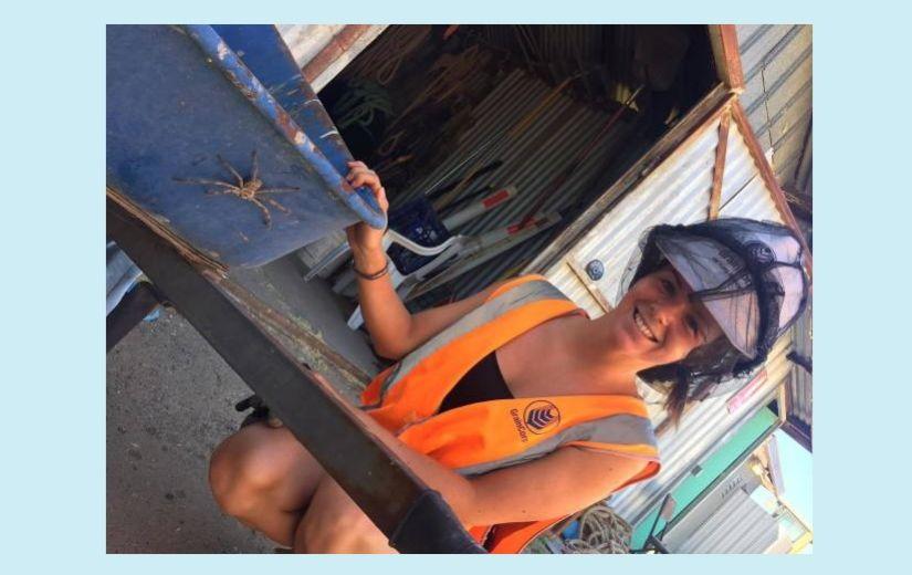 AUSTRAALIA REISIBLOGI: Kuidas ämblikufoobikuna Austraalias toime tulla?